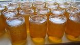 Мед з домашньої пасіки (травневий+акація 2 л.,чиста вага меду 2.8кг.) photo 2