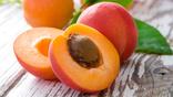 Саджанці персика Білий лебідь та/або НЕКТАРИН  в лоті 10 штук